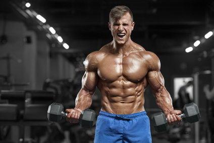 aminosäuren muskeln